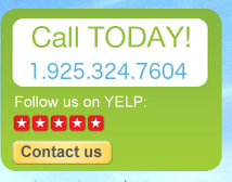 Phone yelp contact us